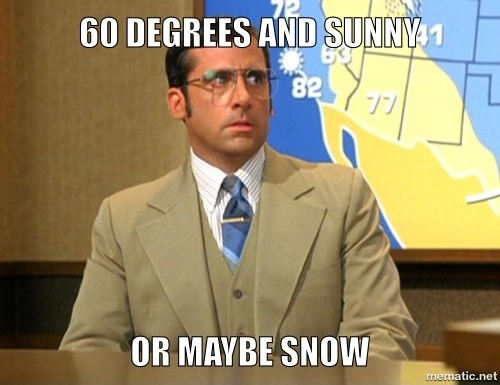 steve carrell weather